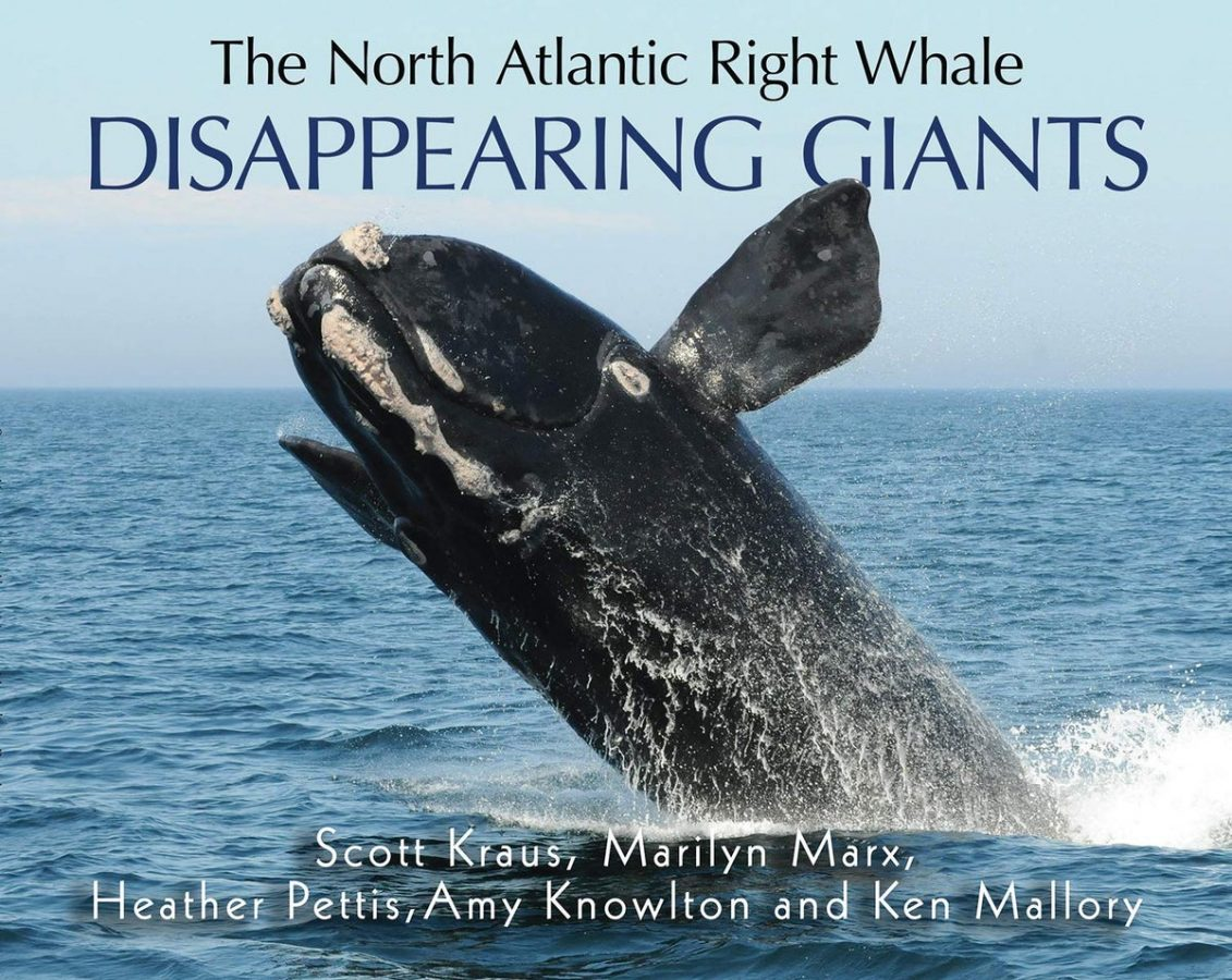 Book Cover of Disappearing Giants