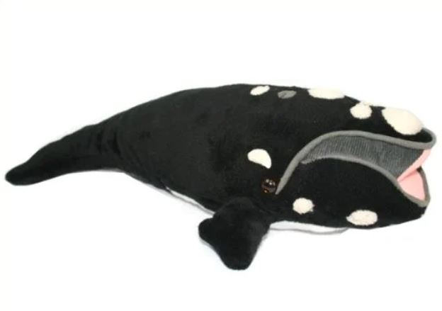 right whale plushie