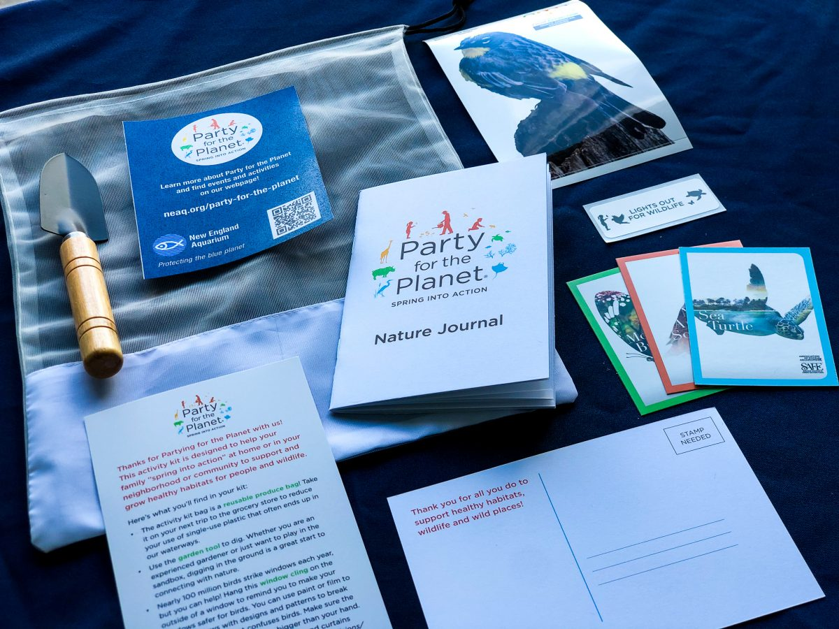 Party for the Planet Activity Kit